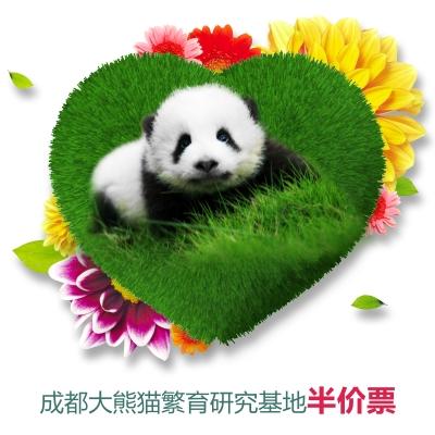 成都熊猫基地门票-半票(学生.儿童.老人)